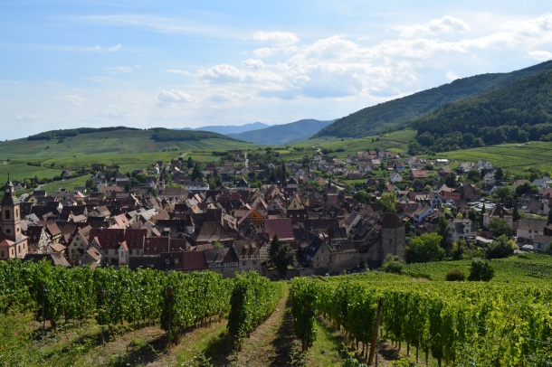 Bird's eye view of Riquewihr and the Alsace vineyards